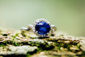 sapphire engagement ring on a tree trunk