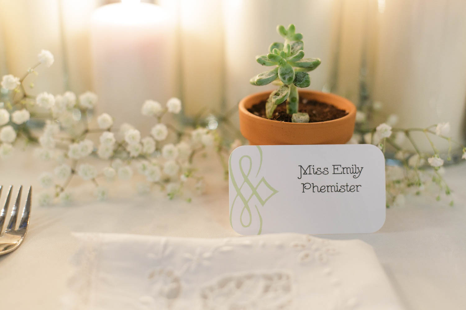 succulent wedding guest favors in small terra cotta planters