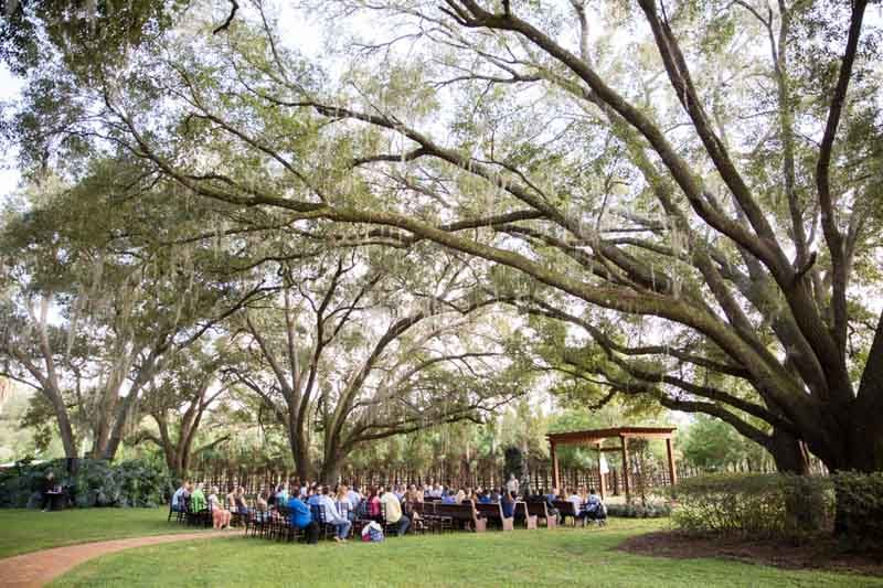 wedding ceremony under large oak tree at Club Lake Plantation