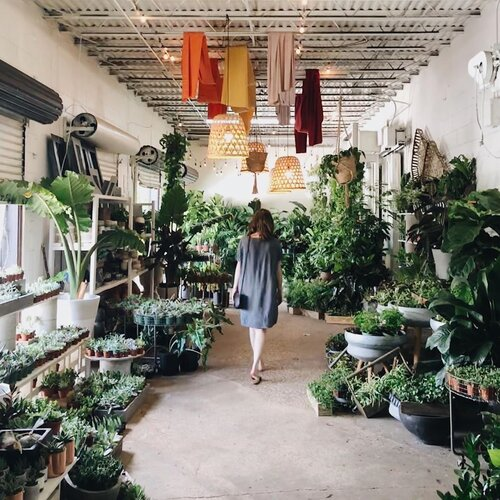 woman walking between plants at The Heavy WP