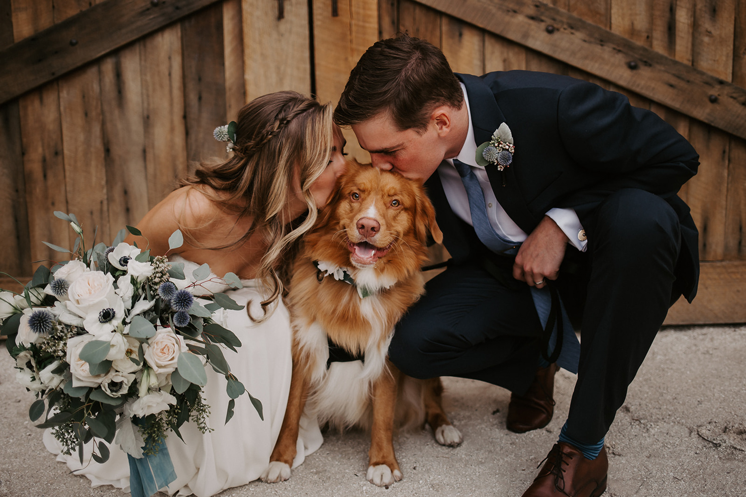 bride and groom kissing their dog after wedding